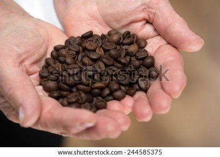 Roasted beans. Closeup of senior woman hands holding brown roasted coffee beans while standing against grey background - stock photo