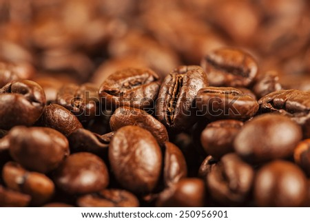 Roasted brown coffee beans - stock photo