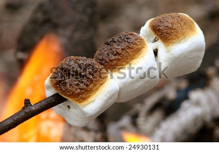 roasted marshmallows on the campfire - stock photo