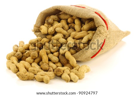 roasted peanuts in a burlap bag on a white background - stock photo