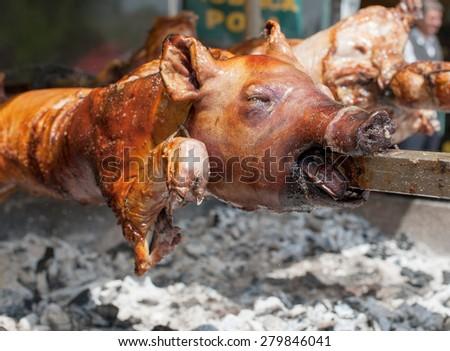 roasted piggy on fair - stock photo