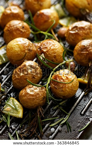 Roasted potatoes with rosemary, garlic, lemon and sea salt on a grilled pan. Nutritious and delicious vegetarian meal prepared with organic products - stock photo