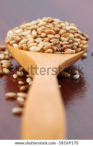 Roasted sesame seeds on a wooden spoon - stock photo