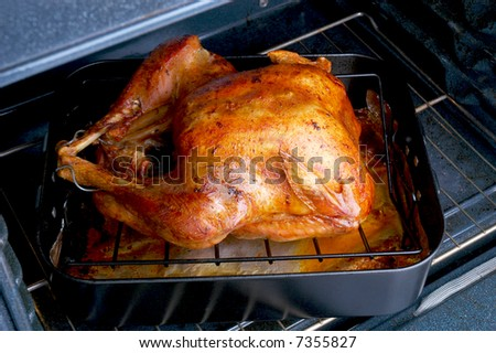 Roasted Turkey in oven ready to be taken out and Carved - stock photo