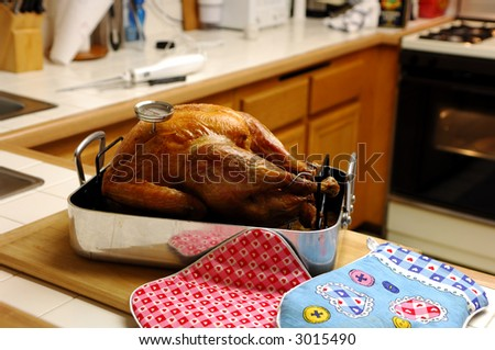 Roasted Turkey Just Removed From The Oven - stock photo