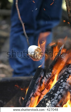 Roasting a marshmallow - stock photo