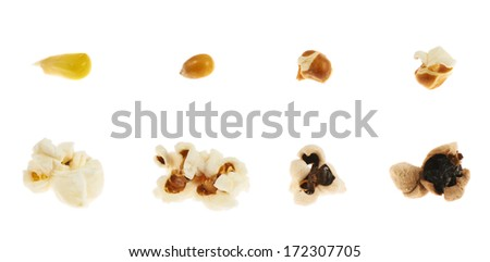 Roasting corn kernel into a popcorn isolated over white background, set of eight step images - stock photo