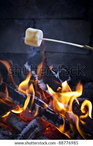 Roasting Marshmallows. - stock photo