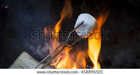 Roasting Marshmallows Over the Camp Fire