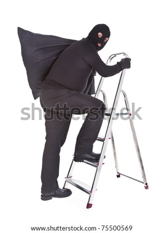 robber with sack on ladder isolated on white - stock photo