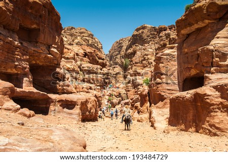 Rock and nature in Petra (Rose City), Jordan. The city of Petra was lost for over 1000 years. Now one of the Seven Wonders of the Word - stock photo