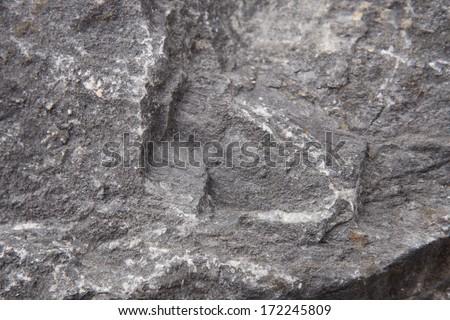 rock background - stock photo