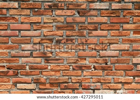 Rock brick wall for background.