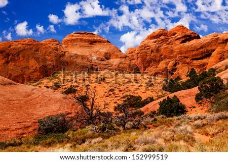 Rock Canyon Devils Garden Arches National Park Moab Utah USA Southwest.  - stock photo