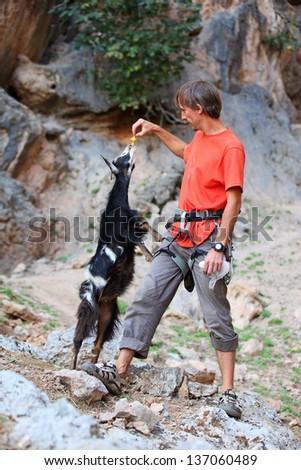 Rock climber feeding a goat at a cliff - stock photo
