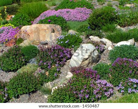 Rock Garden - stock photo