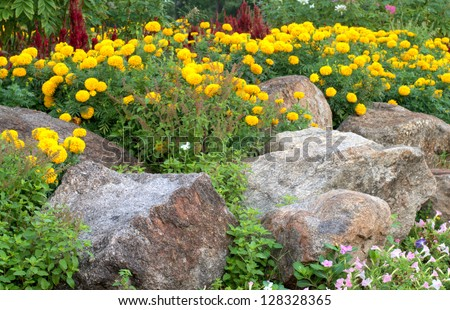 rock garden with multicolor flowers - stock photo