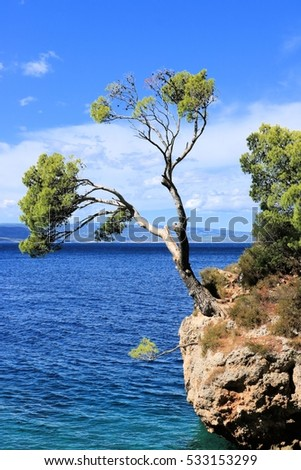 rock in Brela, Makarska riviera, croatia