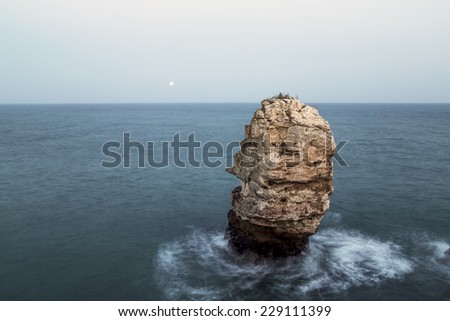 Rock in sea and rising moon - stock photo