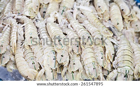 rock lobster, freshly caught on the counter at the fish market - stock photo