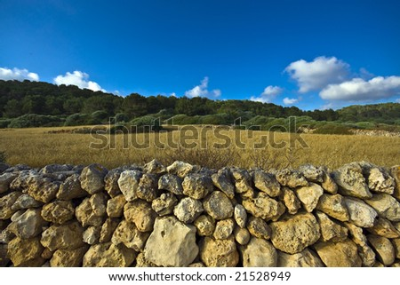 Rock wall in front of a field - stock photo