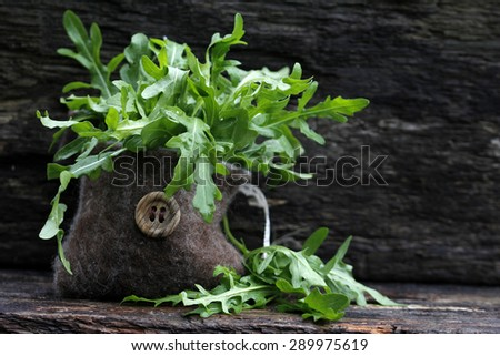 rocket, arugula - stock photo
