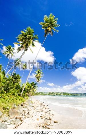 Rockly Bay, Tobago - stock photo