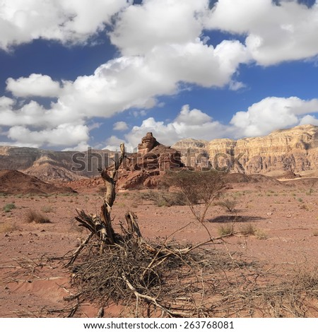 Rocks and dry bush in stone desert - Timna national geological park. Eilat area, Israel - stock photo