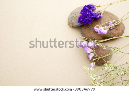 Rocks and dry flowers on the brown paper copy space. - stock photo