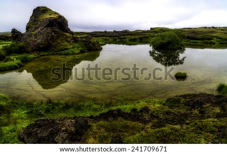 Rocks and grass reflecting in a pool near Myvatn, Iceland - stock photo