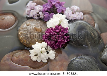 Rocks and lilac flowers in a bowl with water. Shallow DOF. - stock photo