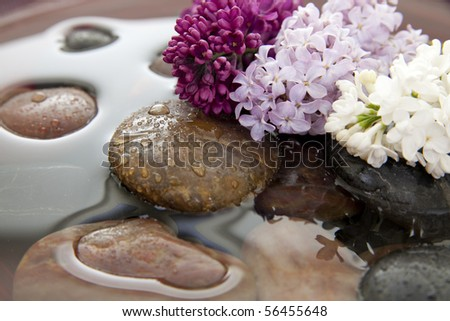 Rocks and lilac flowers in a bowl with water. Shallow DOF. Focus on purple lilacs. - stock photo