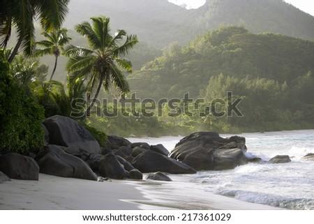 Rocks and palm trees along shore, Anse Intendance, Mahe', Seychelles - stock photo