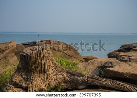 Rocks and stumps on the banks of the reservoir. - stock photo