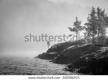 rocks and the sea in the mist - stock photo