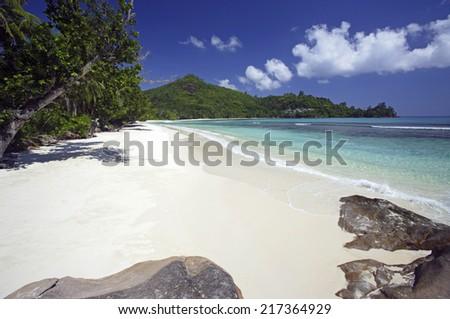 Rocks and trees along shore, Baie Lazare, Mahe', Seychelles - stock photo