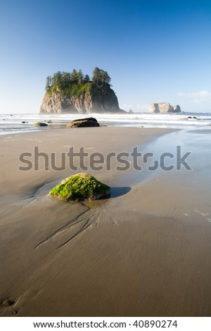 Rocks at the Pacific ocean shore, Olympic National Park, Washington, USA - stock photo