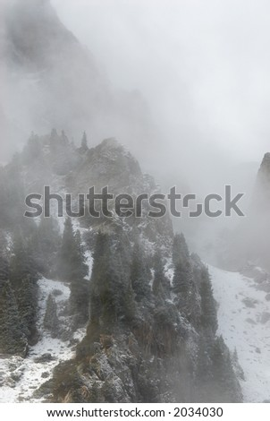 Rocks, forest and fog