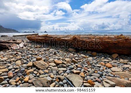 Rocky beach and driftwood tree logs swept ashore -- on the wild Oregon coast - stock photo