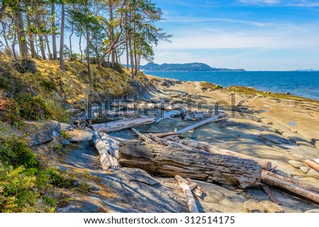 Rocky beach and ocean scenic for vacations and summer getaways