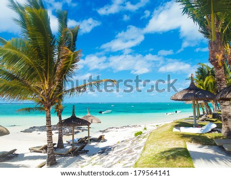 rocky beach of mauritius with palm trees and deckchairs in a beautiful summer day - stock photo