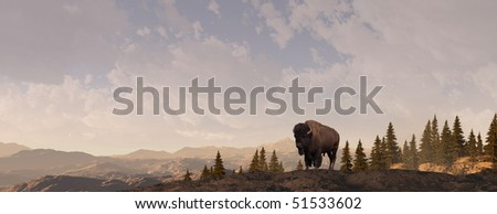 Rocky Mountain Bison - stock photo