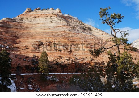 Rocky Mountain of Zion National Park - stock photo