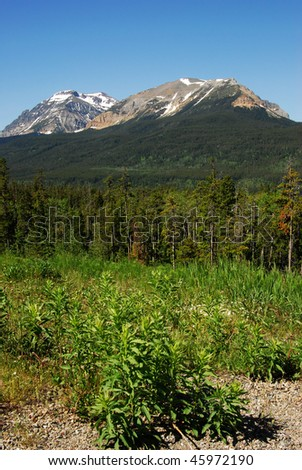 Rocky mountain ridge, meadow and forest in glacier national park, montana, usa - stock photo