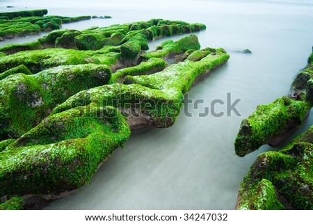 Rocky Seashore with fresh seaweed, long time exposure, Taiwan, East Asia