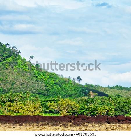 Rocky Shore Low Tide - stock photo