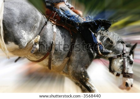 Rodeo Action - Close-up image of a saddle bronc cowboy atop a bucking horse (zoom effect). - stock photo