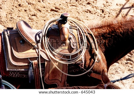 Rodeo horse with saddle and ropes. - stock photo