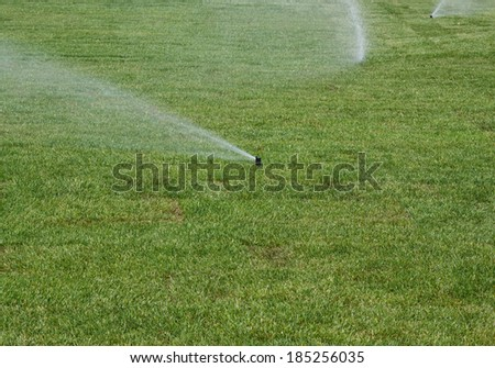 Roll lawn of grass watered with automatic sprinkle