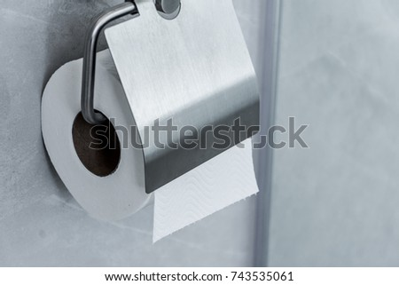 roll of toilet paper stuck on the wall